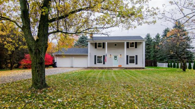 9180 Island Lake Road, Dexter, MI 48130 (#543261375) :: Keller Williams West Bloomfield