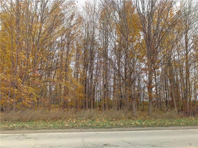 65651 Mound, Washington Twp, MI 48095 (#218107814) :: Duneske Real Estate Advisors