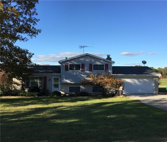10341 Horton Road, Atlas Twp, MI 48438 (#218107816) :: RE/MAX Classic