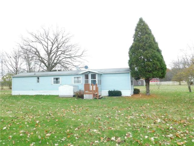 5246 Nicholson Road, Handy Twp, MI 48836 (#218108281) :: Duneske Real Estate Advisors