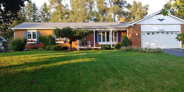 6858 Wellesley, Independence Twp, MI 48346 (#218108417) :: The Buckley Jolley Real Estate Team