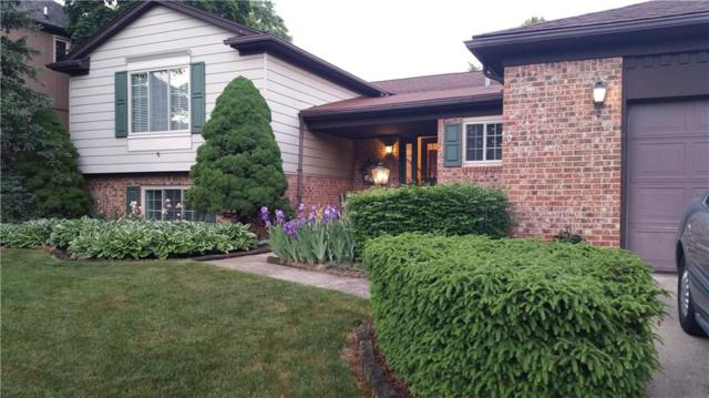282 Rose Brier Drive, Rochester Hills, MI 48309 (#218108899) :: RE/MAX Classic
