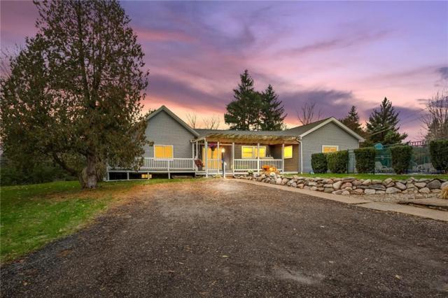 2600 Patterson Lake Road, Putnam Twp, MI 48169 (#218108945) :: The Buckley Jolley Real Estate Team