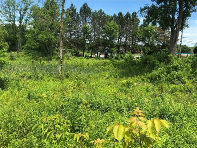 VACANT S Rochester Road N, Oakland Twp, MI 48363 (#218109558) :: RE/MAX Classic