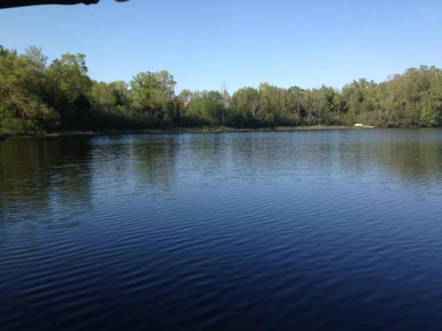 Lot 12 Oak Shore, Green Oak Twp, MI 48178 (#218109779) :: KNE Realty 360