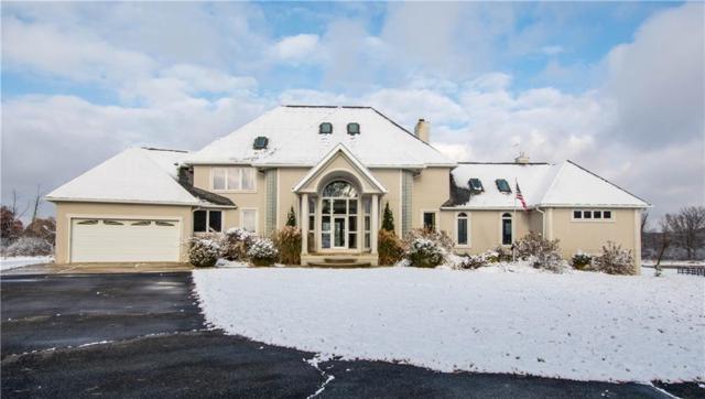 1320 Blue Heron Drive, Webster Twp, MI 48189 (#218110249) :: The Buckley Jolley Real Estate Team