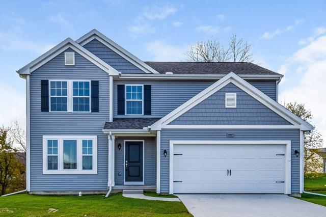 3221 Hill Hollow Lane, Howell Twp, MI 48855 (#218110344) :: The Buckley Jolley Real Estate Team