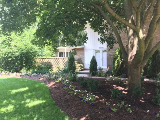 30123 Fox Grove Road, Farmington Hills, MI 48334 (#218110404) :: RE/MAX Nexus