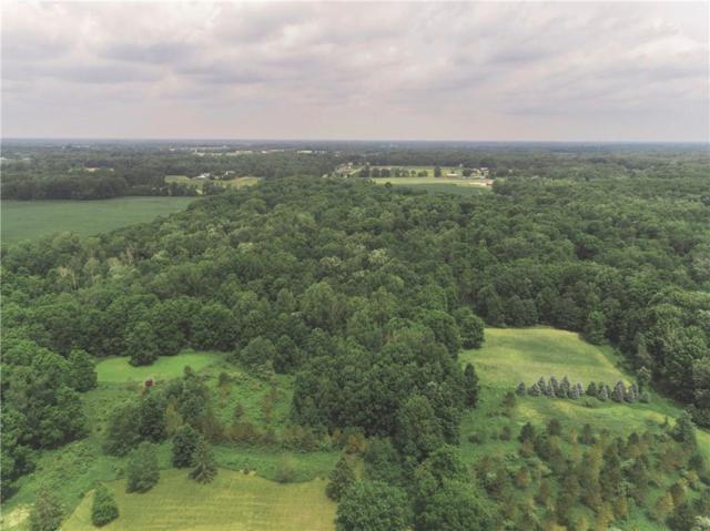 W Ellis Road, Cohoctah Twp, MI 48836 (#218110707) :: The Buckley Jolley Real Estate Team
