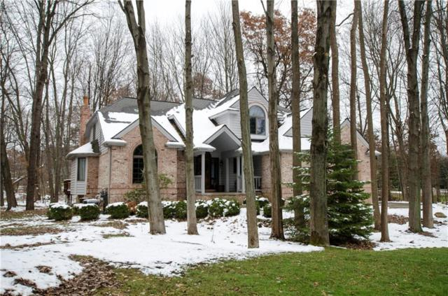 8700 Morning Mist Drive, Independence Twp, MI 48348 (#218111051) :: The Alex Nugent Team | Real Estate One