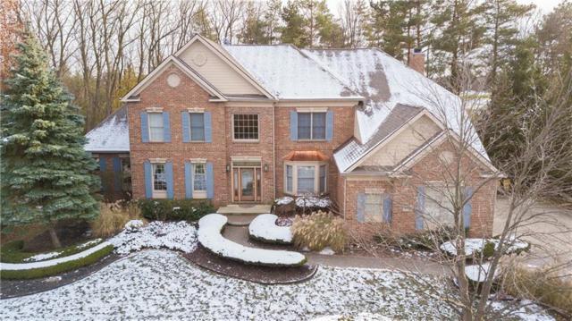 45541 Tournament Drive, Northville Twp, MI 48168 (#218111082) :: Duneske Real Estate Advisors
