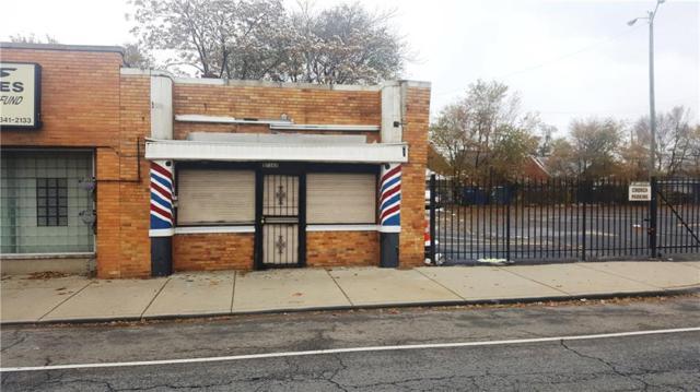 17365 Wyoming Street, Detroit, MI 48221 (#218111092) :: RE/MAX Classic