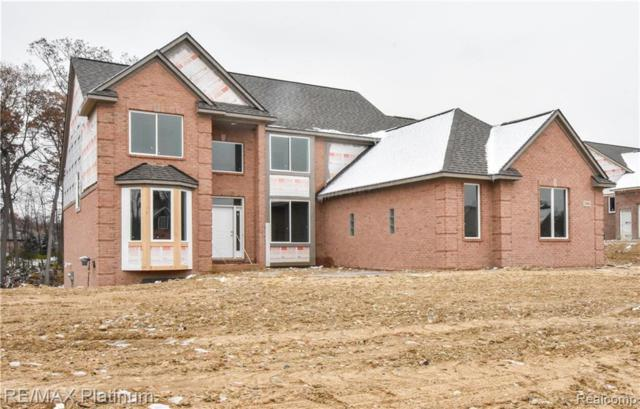 2466 Cristina Anne Court, Hartland Twp, MI 48855 (#218111159) :: The Buckley Jolley Real Estate Team