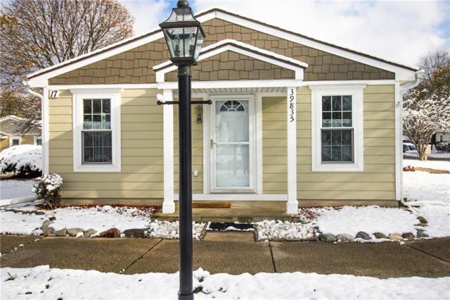 39835 Village Wood Lane, Novi, MI 48375 (#218111187) :: Duneske Real Estate Advisors