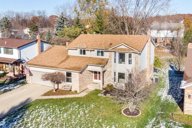 164 Rose Brier Drive, Rochester Hills, MI 48309 (#218111566) :: The Alex Nugent Team | Real Estate One