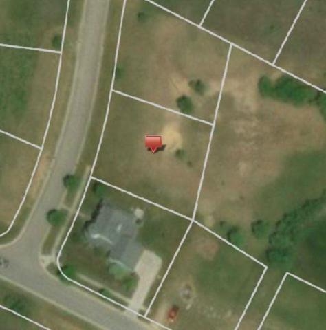 14255 Durant Street, Fenton Twp, MI 48451 (#218111679) :: The Buckley Jolley Real Estate Team