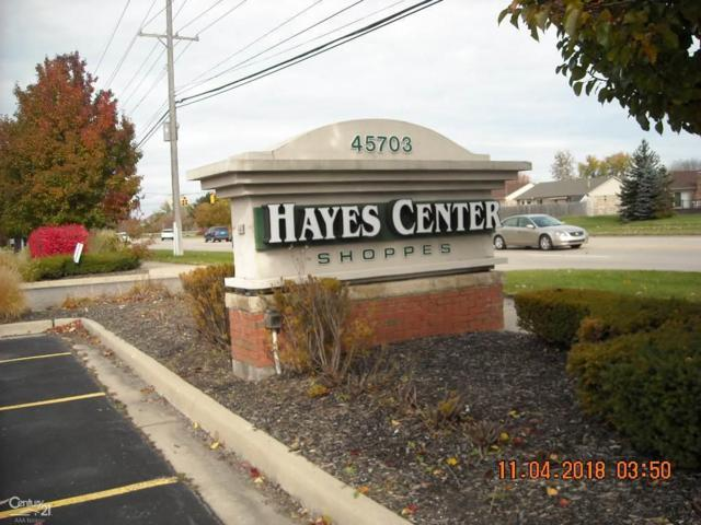 45655 Hayes Rd, Shelby Twp, MI 48315 (#58031365198) :: The Alex Nugent Team | Real Estate One
