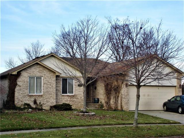 52153 Hickory Drive, Chesterfield Twp, MI 48047 (#218113008) :: RE/MAX Classic