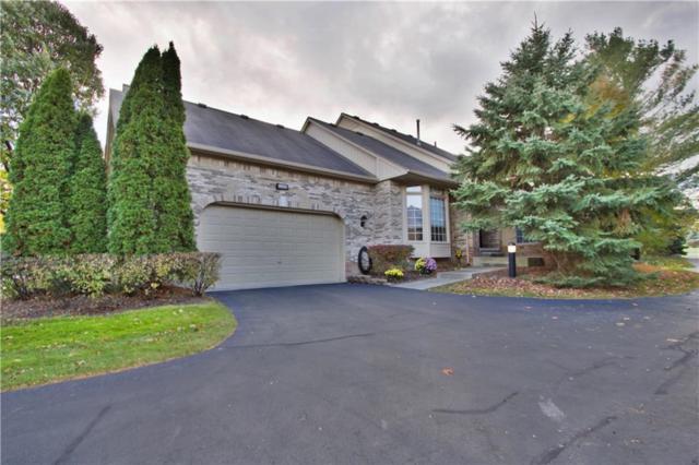 1953 Clearwood Court, Shelby Twp, MI 48316 (#218113597) :: Duneske Real Estate Advisors