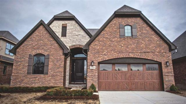 53044 Enclave Circle, Shelby Twp, MI 48315 (MLS #58031366204) :: The Toth Team