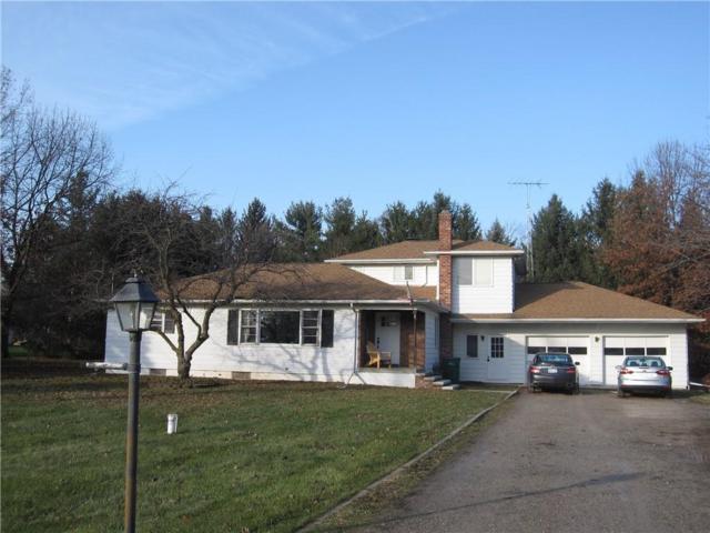 3544 Weber Road, Lodi Twp, MI 48176 (#218114467) :: RE/MAX Classic