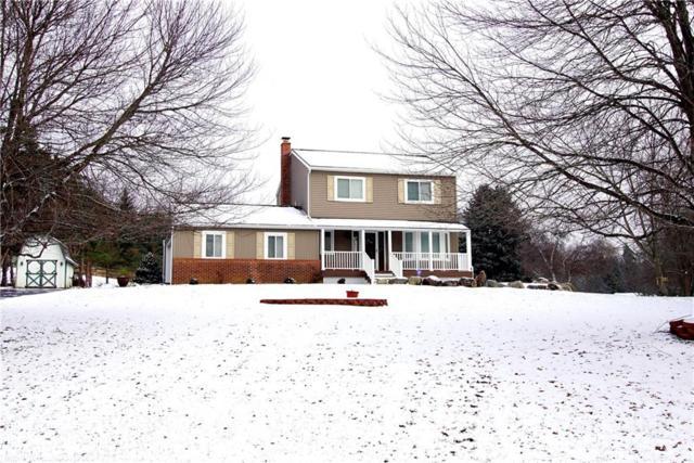 2600 Sun Terrace Drive, Hartland Twp, MI 48353 (#218115069) :: RE/MAX Classic