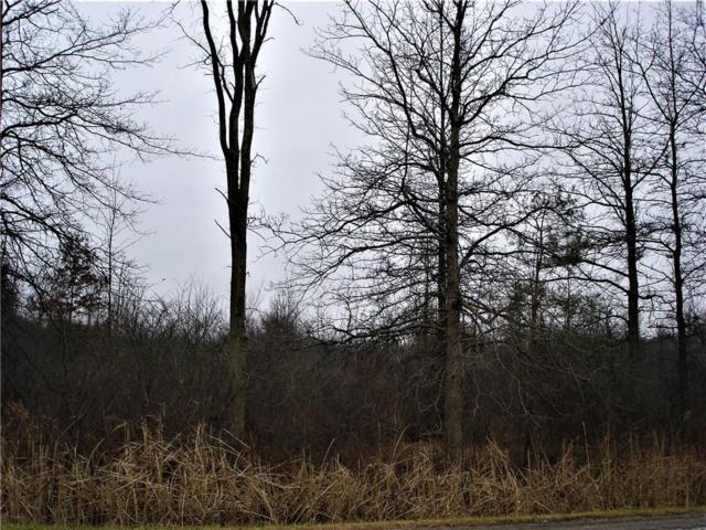 0 Short Cut Road, Cottrellville Twp, MI 48039 (#218116261) :: RE/MAX Classic