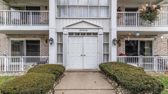 38226 Ann Arbor Trail #226, Livonia, MI 48150 (#543261895) :: The Buckley Jolley Real Estate Team