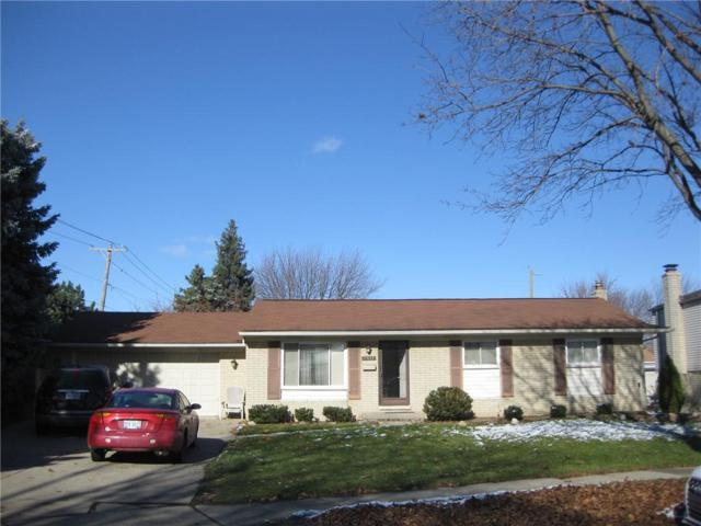 11609 Cocoa Court, Sterling Heights, MI 48312 (#218116945) :: RE/MAX Nexus