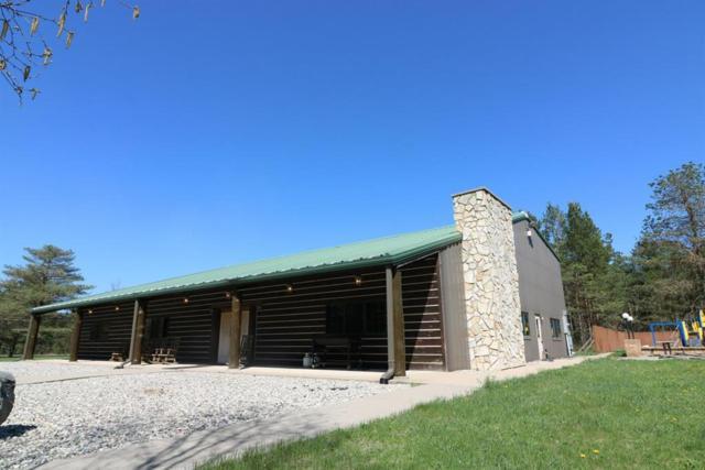 643 S Old Camp Trl, Crystal Twp, MI 48818 (#59018057834) :: Keller Williams West Bloomfield