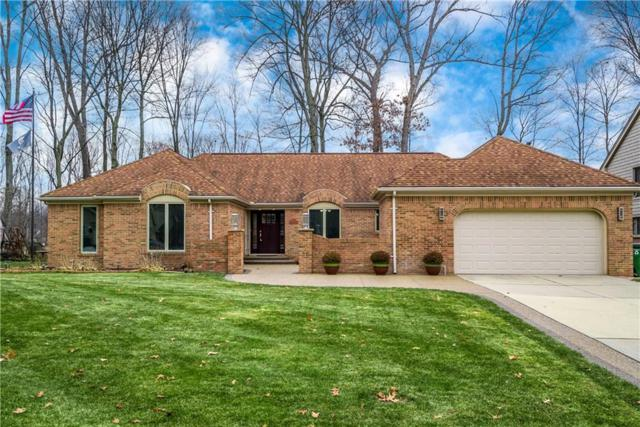 53248 Robinhood Drive, Shelby Twp, MI 48315 (#218117470) :: NERG Real Estate Experts