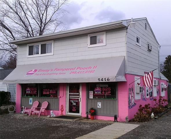 1416 W Auburn Road, Rochester Hills, MI 48309 (#218117715) :: RE/MAX Classic