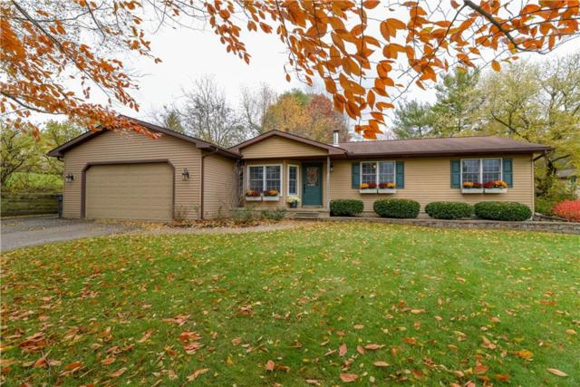 6042 Superior Drive, Green Oak Twp, MI 48116 (#218117819) :: RE/MAX Classic