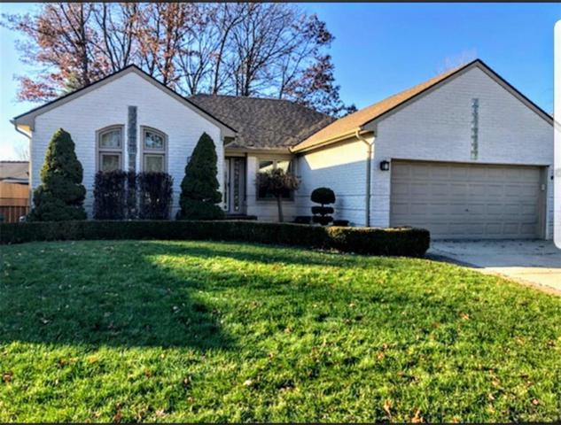 46273 Meadowview Drive, Shelby Twp, MI 48317 (#218117857) :: NERG Real Estate Experts