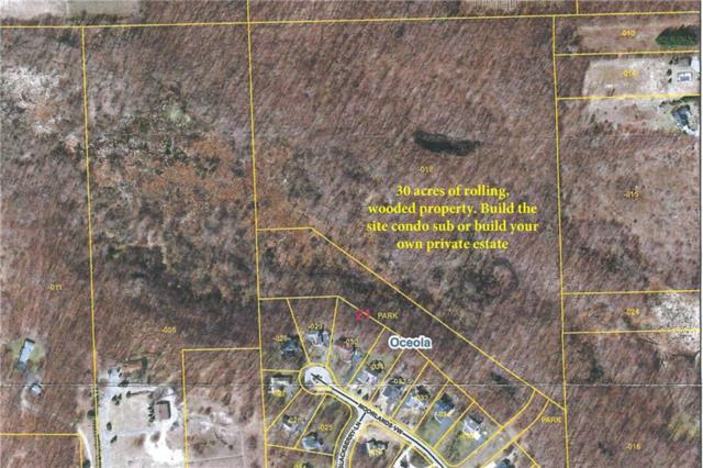 307 acres Moorland's View, Oceola Twp, MI 48843 (#218118329) :: RE/MAX Classic
