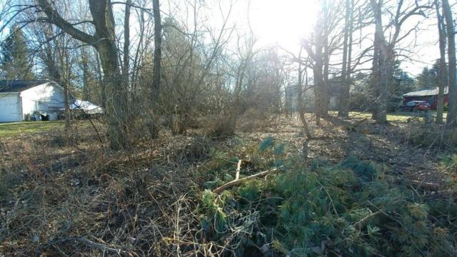 VL Woodland Lot 117 Drive, Hadley Twp, MI 48455 (MLS #218119202) :: The Toth Team
