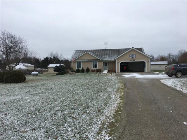 3420 Gravel Creek Road, North Branch Twp, MI 48416 (#218120692) :: RE/MAX Nexus
