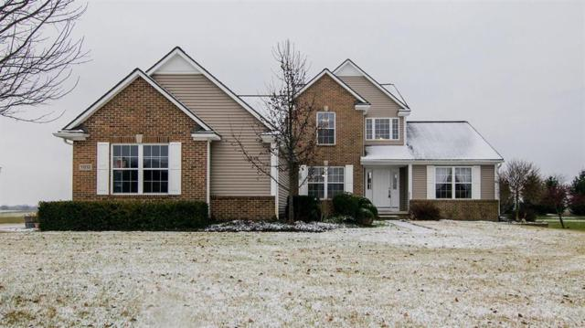 11213 Sand Hill Drive, Grass Lake Twp, MI 49240 (#543262125) :: The Buckley Jolley Real Estate Team