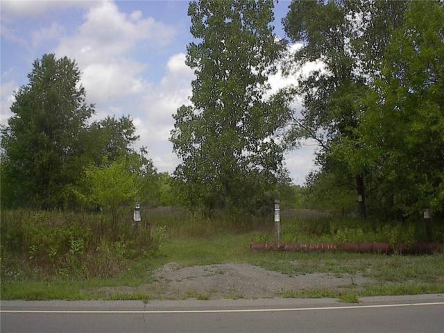 0000 Judd Road, Sumpter Twp, MI 48111 (#219001263) :: RE/MAX Classic