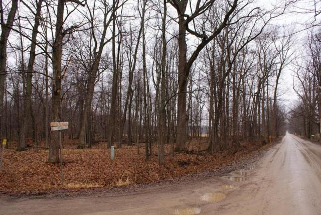 Lot C Darlene Drive, Hadley Twp, MI 48462 (#219001298) :: The Buckley Jolley Real Estate Team