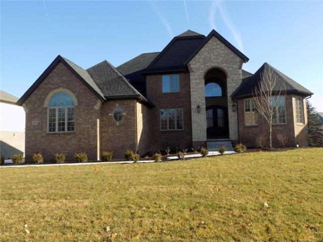 10653 Stoney Point Drive, Green Oak Twp, MI 48178 (#219001510) :: The Mulvihill Group