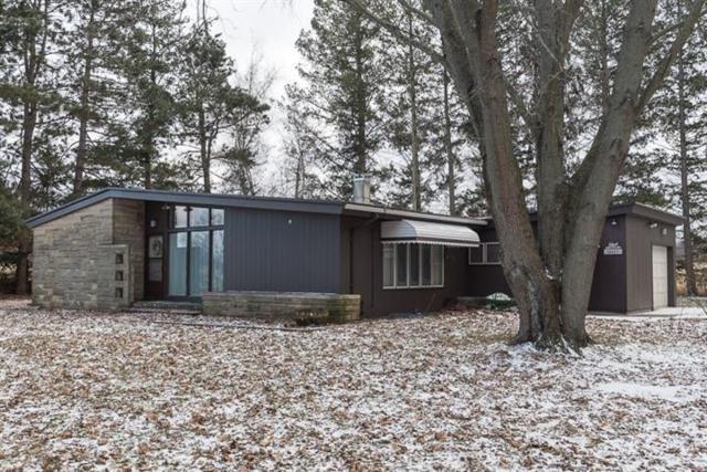 10071 Portage Lake Road, Waterloo Twp, MI 49259 (#543262063) :: The Buckley Jolley Real Estate Team