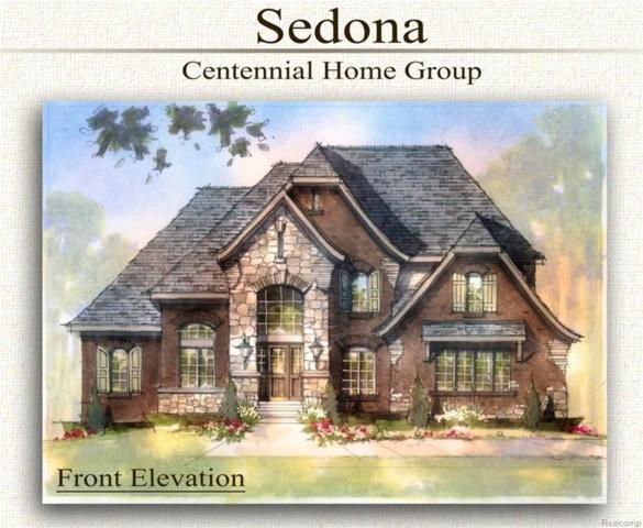 50400 Boardwalk Avenue, Northville, MI 48167 (#219003538) :: Duneske Real Estate Advisors