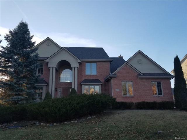 16795 Brooklane Boulevard, Northville Twp, MI 48168 (#219003854) :: Duneske Real Estate Advisors
