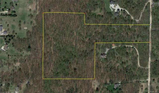 16 Acres Blood Road, Metamora Twp, MI 48455 (#219003982) :: RE/MAX Classic