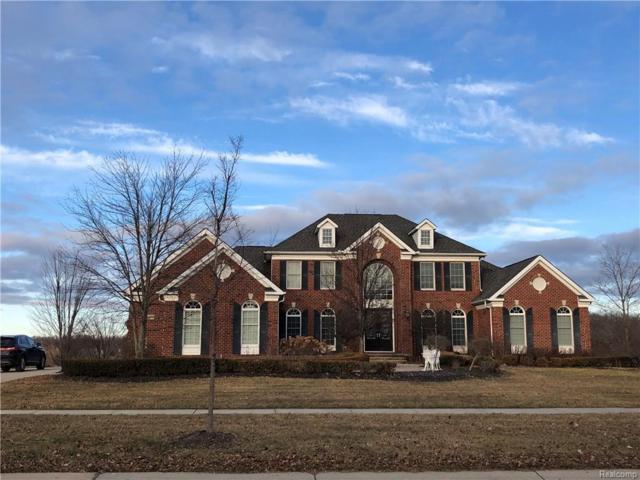 50254 Drakes Bay Drive, Novi, MI 48374 (#219003983) :: Duneske Real Estate Advisors