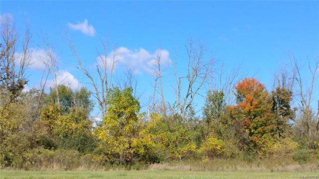 V/L Peppermill Road, Lapeer, MI 48446 (#219004131) :: The Buckley Jolley Real Estate Team