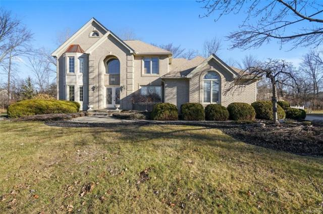 47222 Northgate Court, Canton Twp, MI 48188 (#219004203) :: RE/MAX Classic