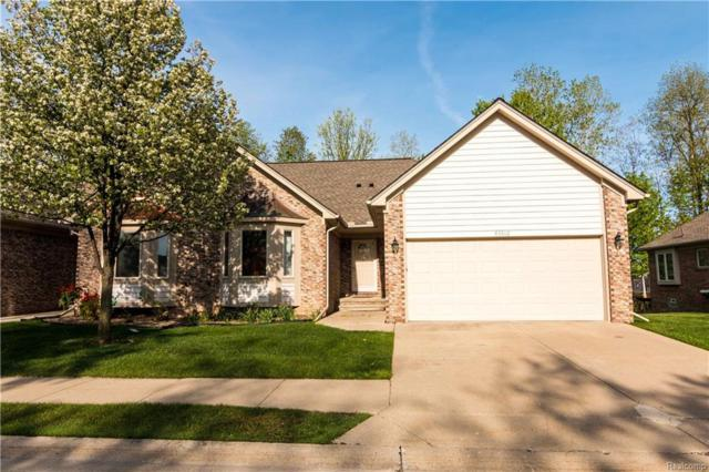 45912 Woodview Drive, Shelby Twp, MI 48315 (#219004243) :: RE/MAX Classic