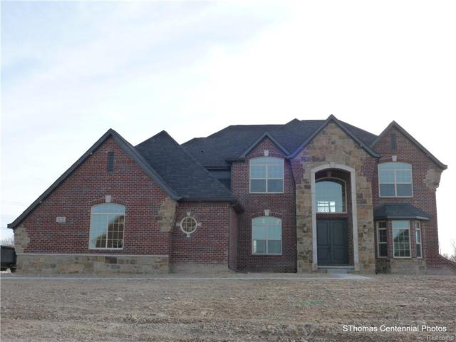 50370 Boardwalk Avenue, Novi, MI 48167 (#219004368) :: Duneske Real Estate Advisors